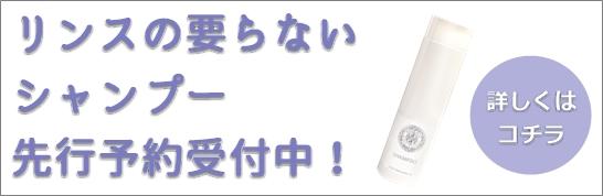 シャンプーサイドバナ546-178.jpg